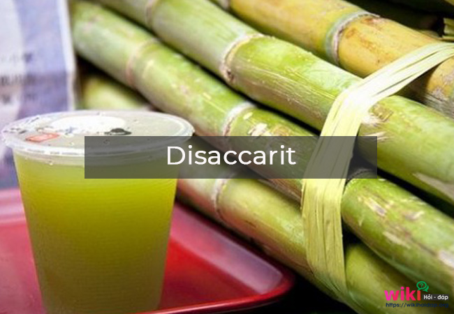 Disaccarit
