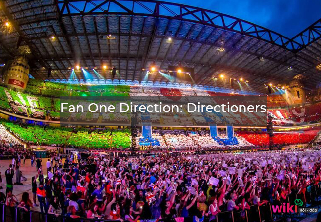2. Fan One Direction: Directioners