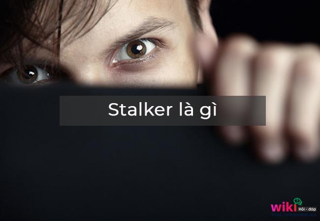 Stalkface 2019